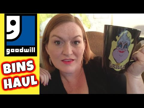 Goodwill Outlet Bins Haul   $11 into $??   Goodwill Outlet Haul to Resell   Reselling on Ebay 2019