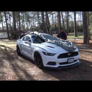 Custom Fit Car Cover (15-17 Mustang)